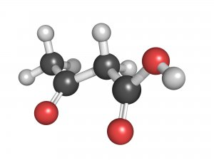 Ketone body (acetoacetic acid), molecular model. Atoms are represented as spheres with conventional color coding